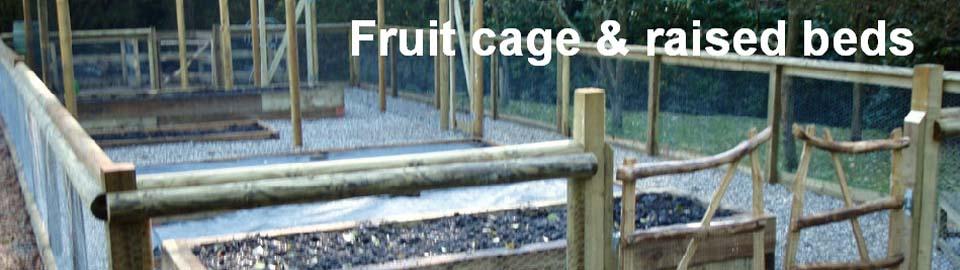 g_fruit6.jpg
